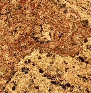 Cork Flooring Natural Burl Cherry Swirls Sample