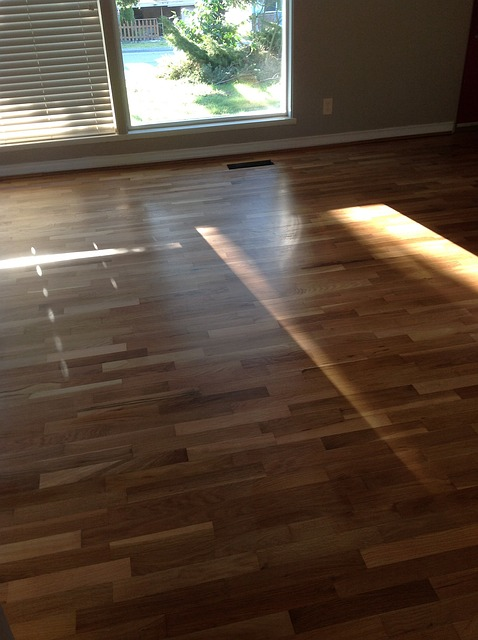 How To Fix Scratches On Your Hardwood Floors World Floors Direct