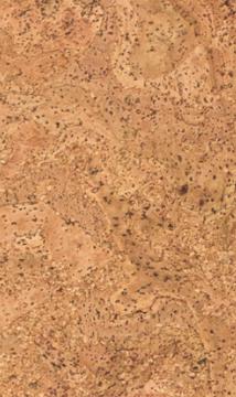 Cork Flooring Winding Stream